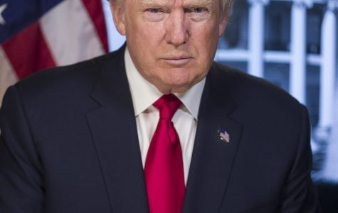 Newly elected President Trump takes office
