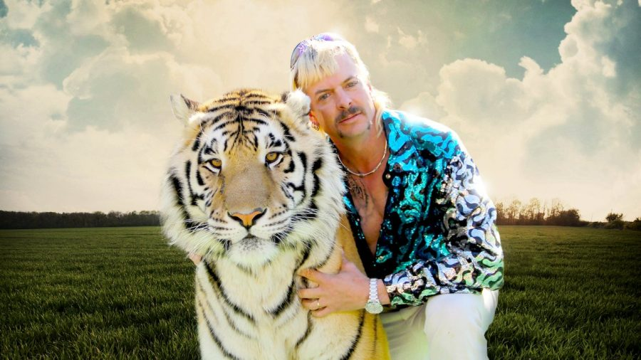 %27Tiger+King%27+offers+unique+entertainment+experience