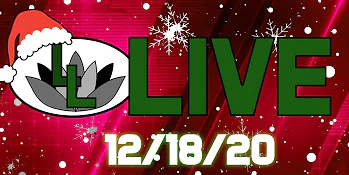 Lotus Leaf Live celebrates Christmas